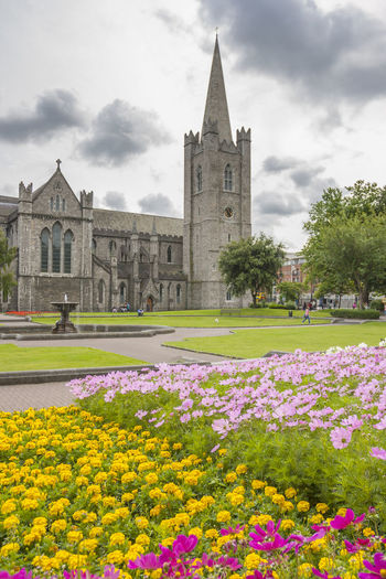 Saint Patrick Cathedral Garden in Dublin, Ireland Dublin Ireland Cathedral Saint Patrick's Cathedral Flowers Irish Architecture Building Exterior Sky Flower Flowering Plant Nature Saint Patrick Religion Flowerbed Travel Destinations Building Tower