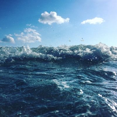 Sea Nature Beauty In Nature Water Sky No People Day Outdoors Blue Waterfront Cloud - Sky Scenics Wave Animal Themes EyeEm Best Shots The Week On EyeEm
