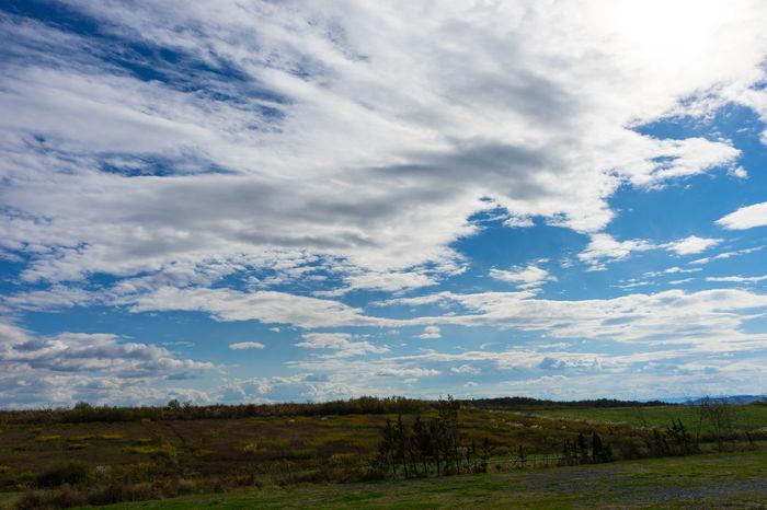 Autumn Beautiful Sky Blue Sky Cloud Countryside Good Weather Holiday Iwate Prefecture Safari Park
