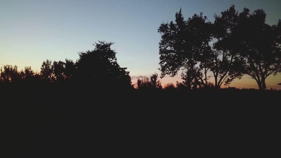 Nightphotography Nature Sundown