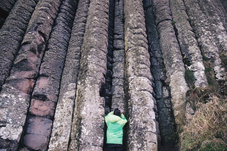 Giant's Causeway Northern Ireland Basalt Columns Casual Clothing Day Forest High Angle View Lifestyles One Person Outdoors Plant Real People Rear View Rocks Go Higher