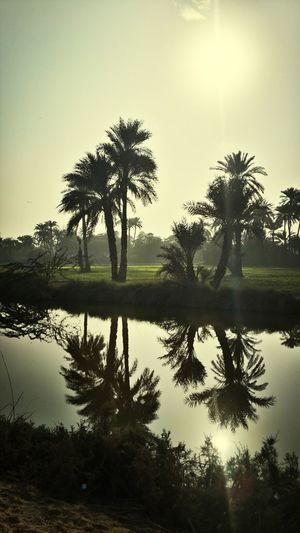 Nature Naturelovers Sunrise Sunlight ☀ Noshehro Feroz Sindh Pakistan Pakistani Reflection Water Reflections Lost In The Landscape