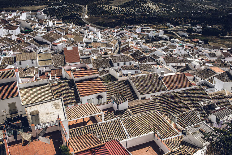 Sea of houses - white houses in Olvera, Andalucia, Spain. Architecture Roof High Angle View City Crowded Crowd House Cityscape Day Town Roof Tile Nature Sunlight TOWNSCAPE Settlement Olvera Street Olvera Spain SPAIN Andalucía Wallpaper White Village Pueblo Old Town Sierra De Grazalema Grazalema 2018 In One Photograph My Best Photo 17.62°