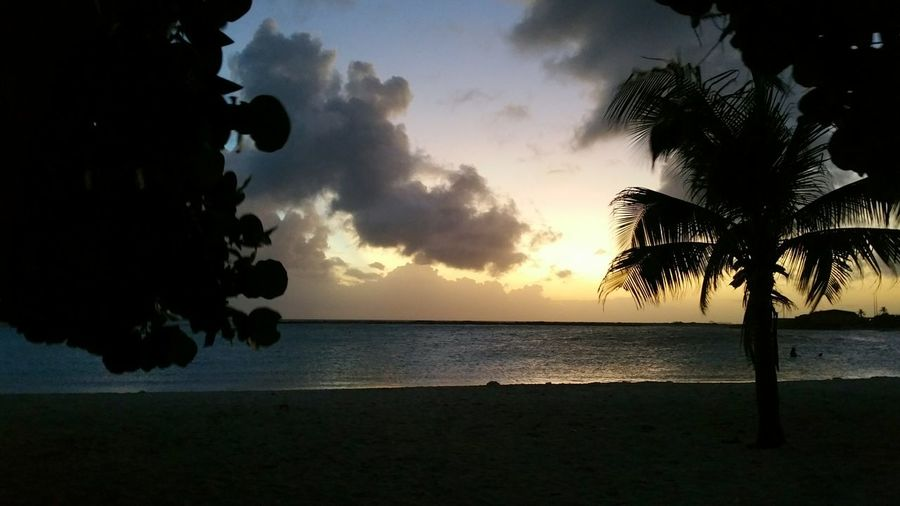 """""""The cure for anything is salt water: sweat, tears or the sea."""" (Isak Dinesen) Sea Beach Sunset Water Sky Nature Silhouette Dramatic Sky Outdoors Sunlight Palm Tree Beauty In Nature Horizon Over Water No People Vacations Sun Sky And Sea Calm Waters Travel Photography Nature Photography Aruba Baby Beach Caribbean"""