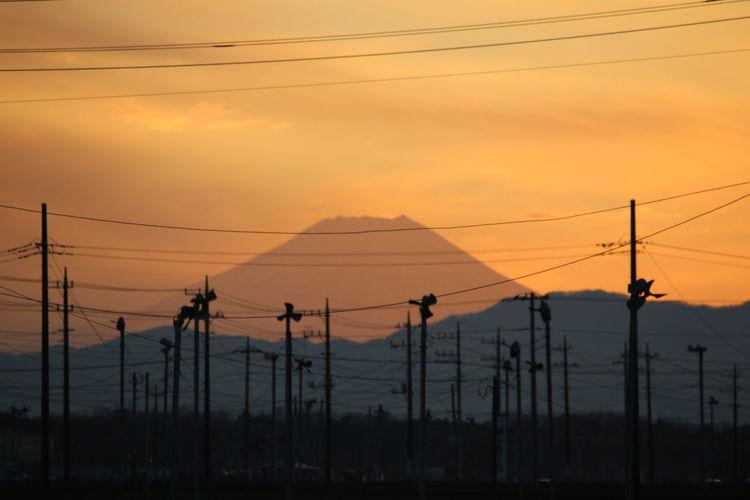 Teaplantation Sunsetcollection Sillhouette Mtfuji Saitama