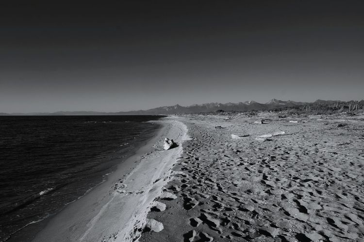 Landscape Outdoors Nature Scenics Day No People Beach Horizon Over Water Sky Sea And Sky Sea View Sea Blackandwhite Photography Black And White Black & White Blackandwhite Seashore Scenic View Sandy Beach in San Rossore Pisa Pisa, Italy My Year My View