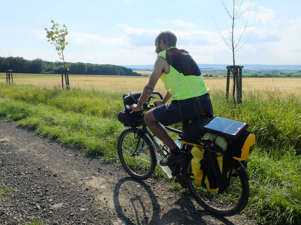 Adventure By Bike Adventure Beauty In Nature Bicycle Bike Packing Bike Touring Casual Clothing Cycling Cyclo Travel Day Field Full Length Grass Growth Land Vehicle Landscape Leisure Activity Lifestyles Mode Of Transport Nature One Person Outdoors Real People Rear View Riding Road Sky Standing Transportation Tree