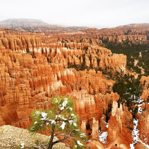 Nature Geology Rock Formation Physical Geography Rock - Object Travel Destinations Travel No People Bryce Canyon Beauty In Nature Scenics Tranquility Day Rock Hoodoo Outdoors Tranquil Scene Canyon