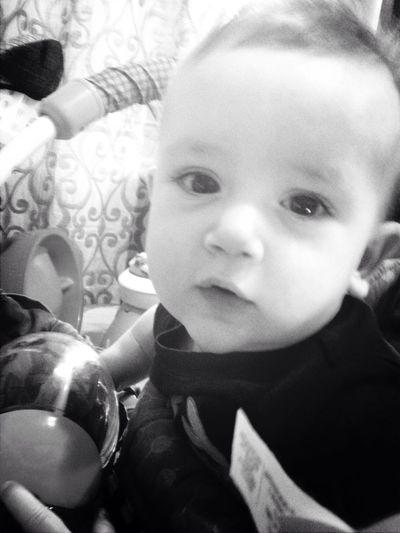Rocco Baby Cute Love