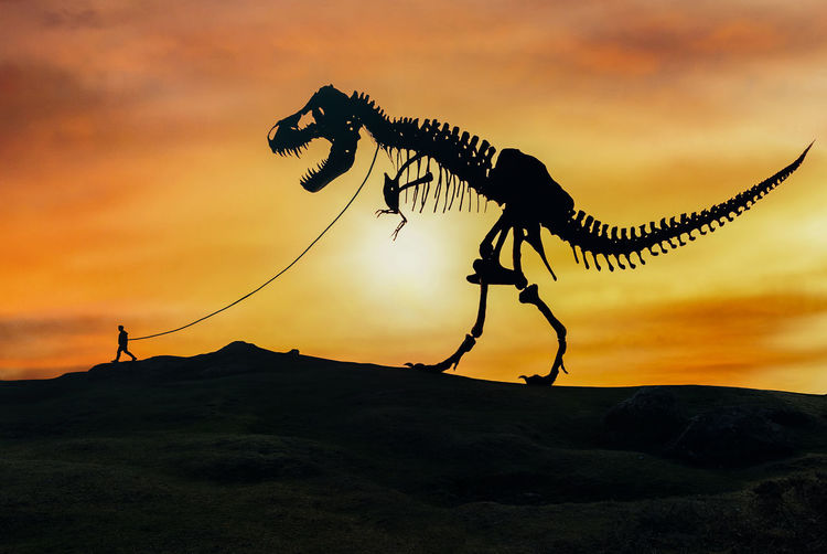 Digital composite image of silhouette man with dinosaur skeleton against sky during sunset