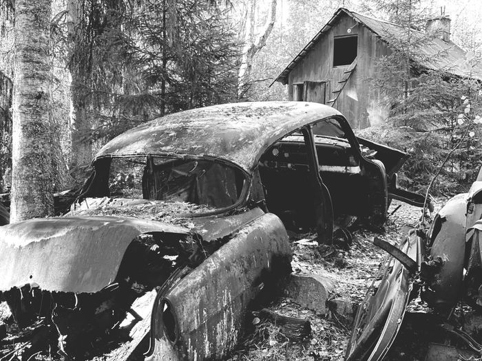 View of abandoned car