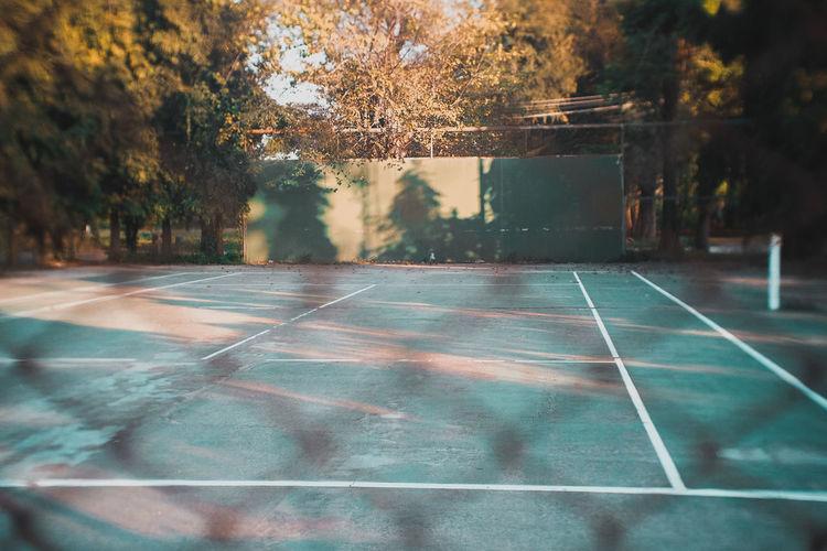 Active Lifestyle  Tennis Ball Tennis 🎾 Tenniscourt Tennis Net Tennis Court Tennis Player Tennislover❤ Tennis Courts Tennis Club Tennislife Basketball - Sport Tree Court Ice Hockey Water Sport Tennis