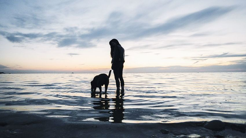 Woman Woman Portrait Dog Sea Sky Beach Nature Silhouette Water Pets Sunset Cloud - Sky Walking Horizon Over Water Domestic Animals Mammal Tranquility Animal Themes Beauty In Nature One Animal Sand Scenics Malmö People
