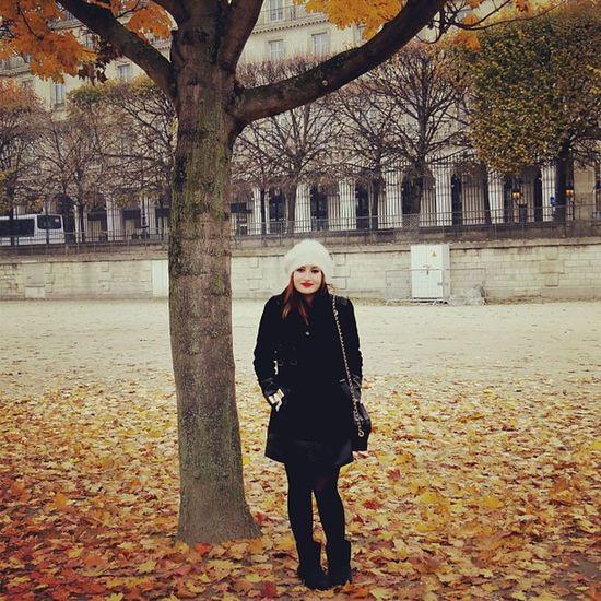 Outono em Paris. Paris France Autumn Pingüino Agustin ?????