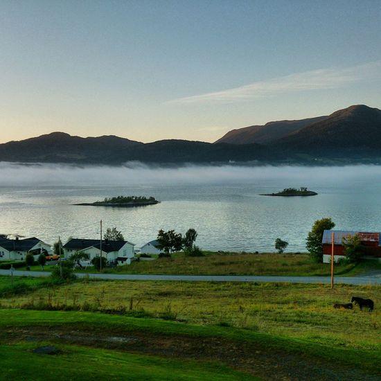 Silnesmyra Fog Eide På Nordmøre Norway