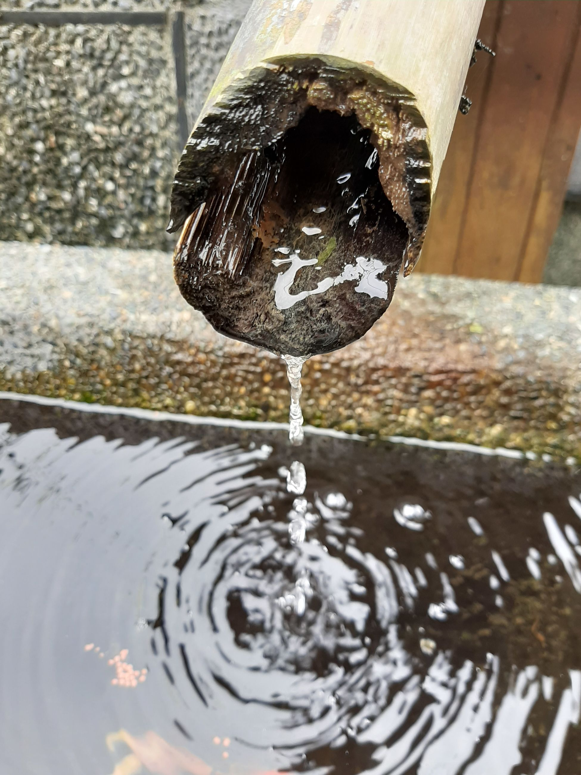 water, motion, pouring, nature, rippled, no people, fountain, drop, purity, day, focus on foreground, close-up, outdoors, falling, refreshment, flowing water, architecture, household equipment, running water, flowing