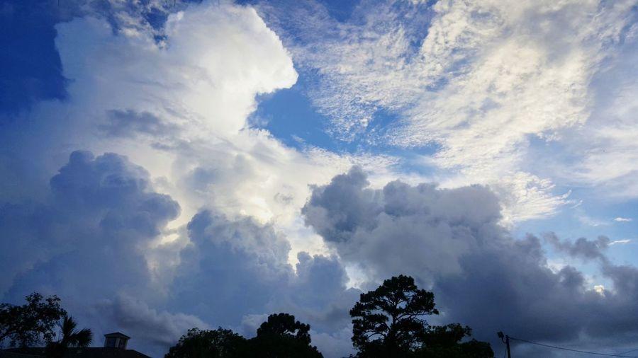 Tree Mountain Blue Forest Social Issues Sun Sky Cloud - Sky Cloudscape Dramatic Sky Cumulonimbus