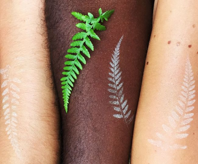 Cropped Image Of Hands With Fern Tattoos