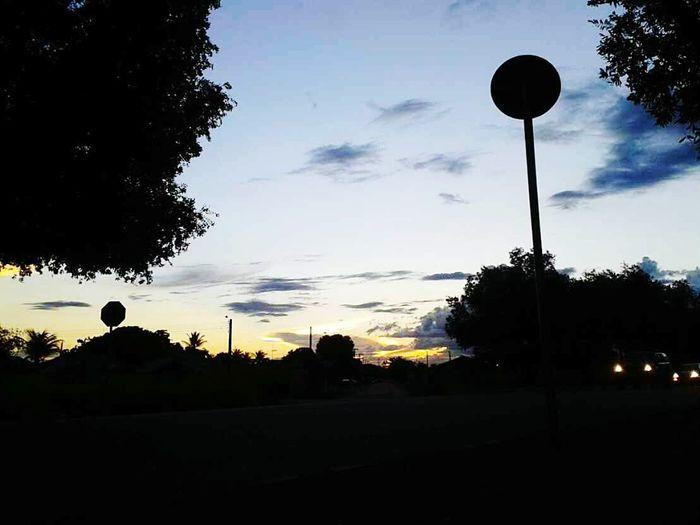 Tree Sky Sunset Silhouette Nature Shadows & Light Boa Vista