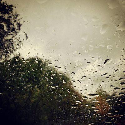 Rain Autumn Instapick Instagood followme insta_krsk krsk
