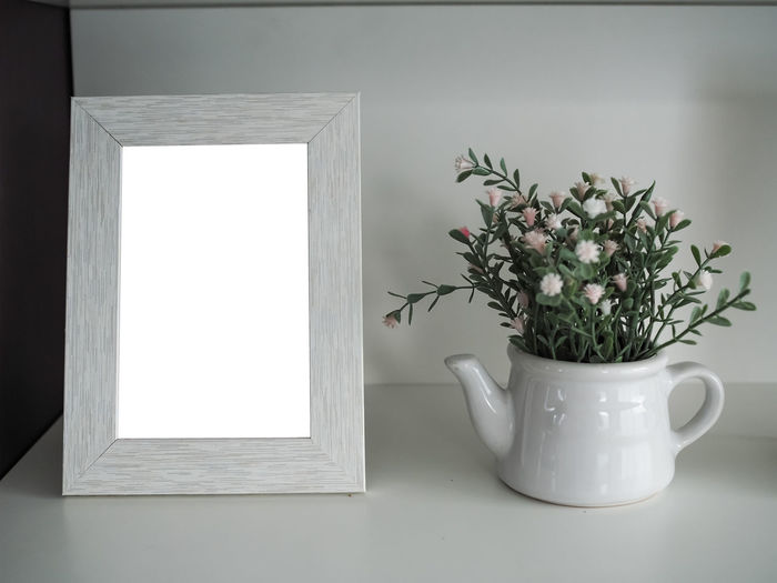 Plant Potted Plant Indoors  Growth Nature White Color Flower No People Flowering Plant Window Vase Home Interior Houseplant Wall - Building Feature Table Day Green Color Plant Part Leaf Beauty In Nature Small