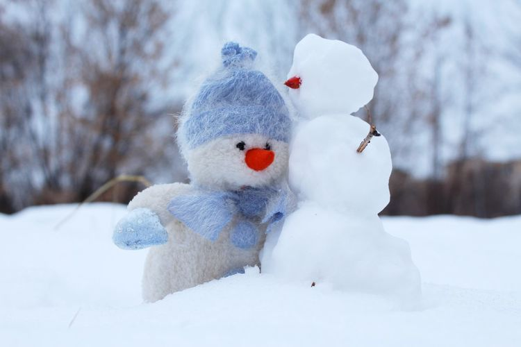 Close-up of snowman against trees during winter