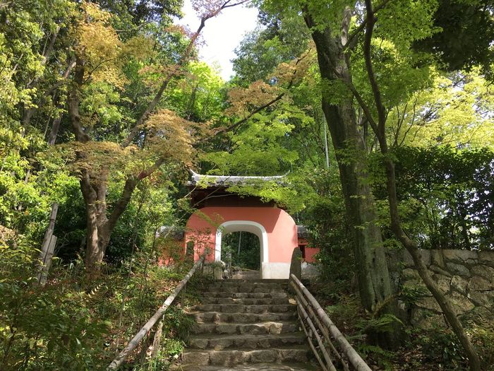 Architecture Built Structure Green Color Japanese Temple Kyoto,japan Outdoors Sekihoji The Way Forward Traditional Culture Tree