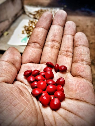 Close-up of hand holding red candies