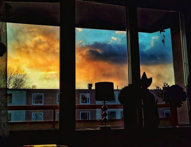 Silhouette buildings against sky seen through glass window