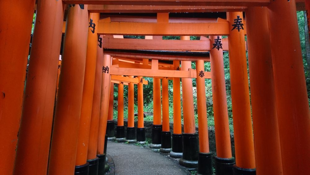 EyeEm Selects Door No People Outdoors Built Structure Kyoto, Japan Tori Orange Color
