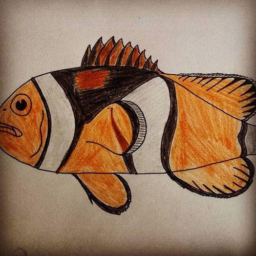 Nemo Clownfish Penart Color