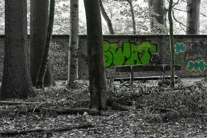 Münster Handorf Boniburgerwald Boniburger Wald Forest Bank Graffiti Colorkey Bnw Blackandwhite Schwarzweiß Nikon Nikon_photography NikonD7100 D7100