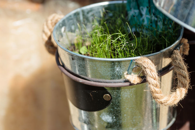 Close-up Container Day Focus On Foreground Food And Drink Green Color Growth High Angle View Metal Nature No People Outdoors Plant Potted Plant Rope Selective Focus Still Life Tied Up Water