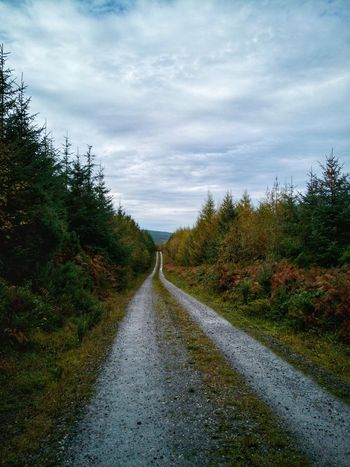 The road less traveled. Cloud - Sky Autumn Outdoors The Way Forward Tree No People Landscape Scenics Sky Nature Day Beauty In Nature Road Rural Scene EyeEm Nature Lover Nature_perfection Autumn Leaves Autumn🍁🍁🍁 Autumn Colors EyeEmNewHere Huawei P10 Plus Beauty In Nature Ireland🍀 Fall Beauty Theroadlesstraveled Perspectives On Nature The Great Outdoors - 2018 EyeEm Awards