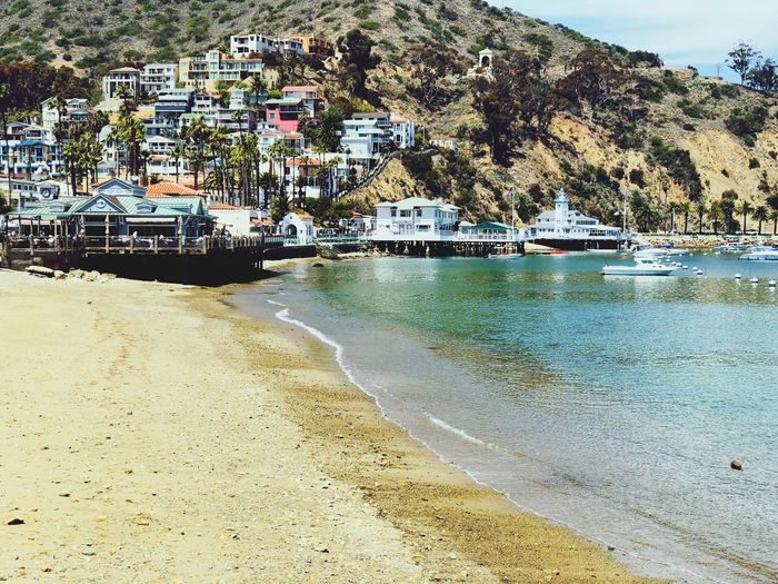 Catalina Beach on Catalina Island locates in the Southern California waters . Houses are high on the hills. Sandy beach with boats docked in the background. Crystal clear ocean water. Ocean water is crystal clear green / blue colored. Calm waters Travel Destinations Sailboats⛵️️ Ocean Water Sandy Beach Green Color Crystal Clear Waters Catalina Shoreline Homes On A Hill Homes On A Mountain Homes On Hills Sandy Beach Catalina Island, Avalon, California Catalina Mountains  Village Houses Travel Destinations Vacation Destination Water Transportation Mode Of Transportation Beach Nature Land Day No People Outdoors Sky