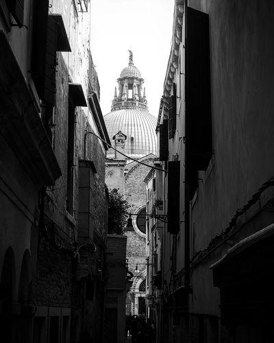 Venice Politics