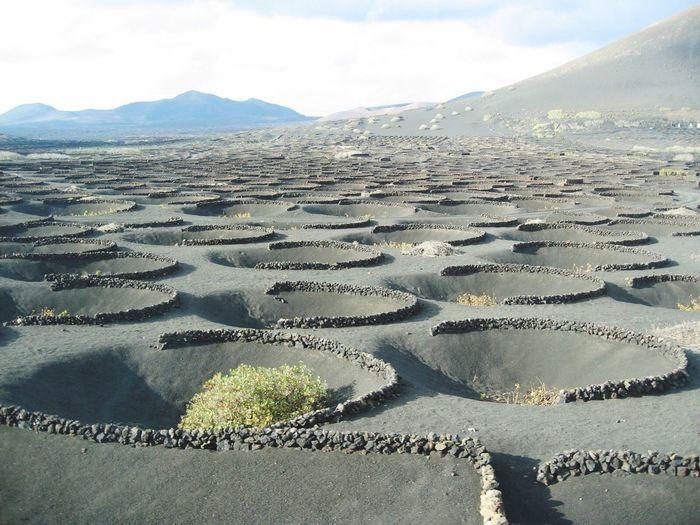 Volcanic landscape at lanzarote