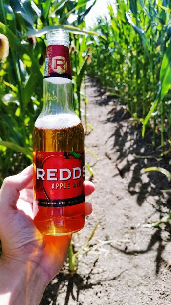 Enjoying the corn maze this Sunday Afternoon Human Body Part Human Hand Text Bottle Drink Alcohol Day Outdoors Drinking Glass People Close-up One Person Cola Water Nature Adult Freshness Beer Beer Glass Beer Time Corn Maze Sunday Afternoon