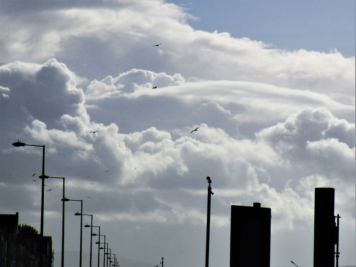Hotels In A Row Seagulls Birds Flying High Fluffy Clouds In A Line Lamp Posts Sea Front Seaside Town Street Lights