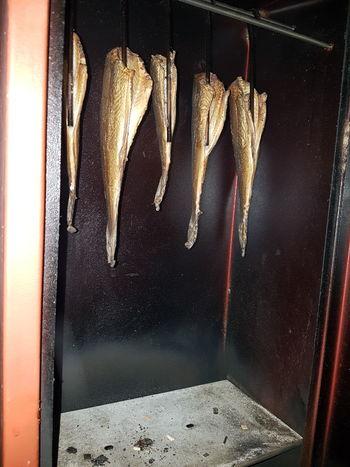 Angeln Räuchern Fisch Wittling