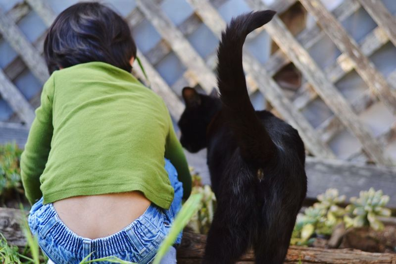 Rear view of boy crouching by cat at backyard