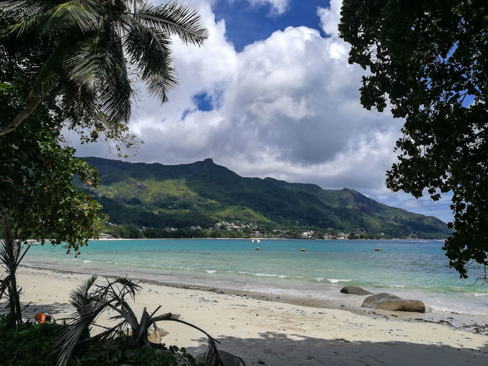 Tree Water Nature Mountain Sea Beach Cloud - Sky Beauty In Nature Outdoors SkySand Leisure Activity Tropical Paradise Tranquility Day Scenics Vacations No People Swimming Berjaya Beach Seychelles Aesthetic Romance Love Honeymoon Tourism Lost In The Landscape