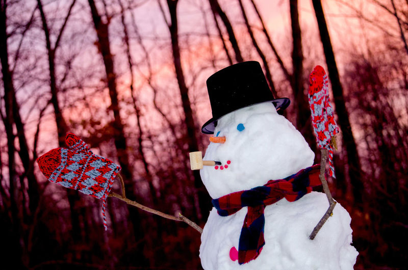 a happy snowman smokes a corn cob pipe in the back yard as the sun creates a beautiful sunset Button Eyes Corn Cob Pipe Creativity Fun Winter Carrot Nose Close-up Focus On Foreground Gloves Nature Outdoors Seasonal Snow Snowman Sticks Sunset Top Hat Tree Shades Of Winter