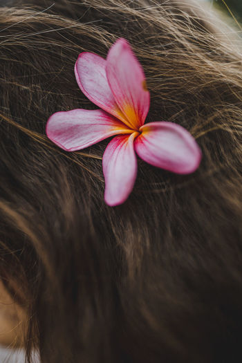Close-up of woman with pink flower in hair