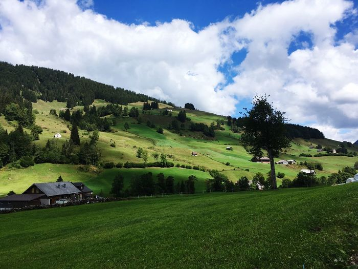 Toggenburg Toggenburg Switzerland Cloud - Sky Plant Sky Beauty In Nature Tree Green Color Landscape Tranquility Nature