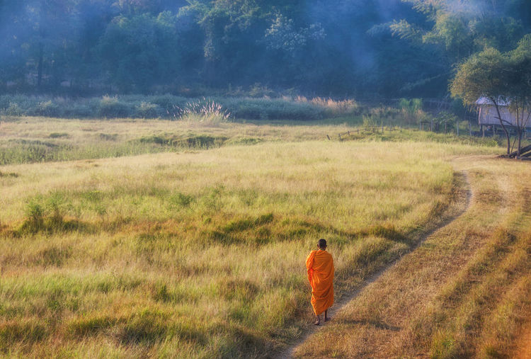 Rear view of a monk walking on landscape