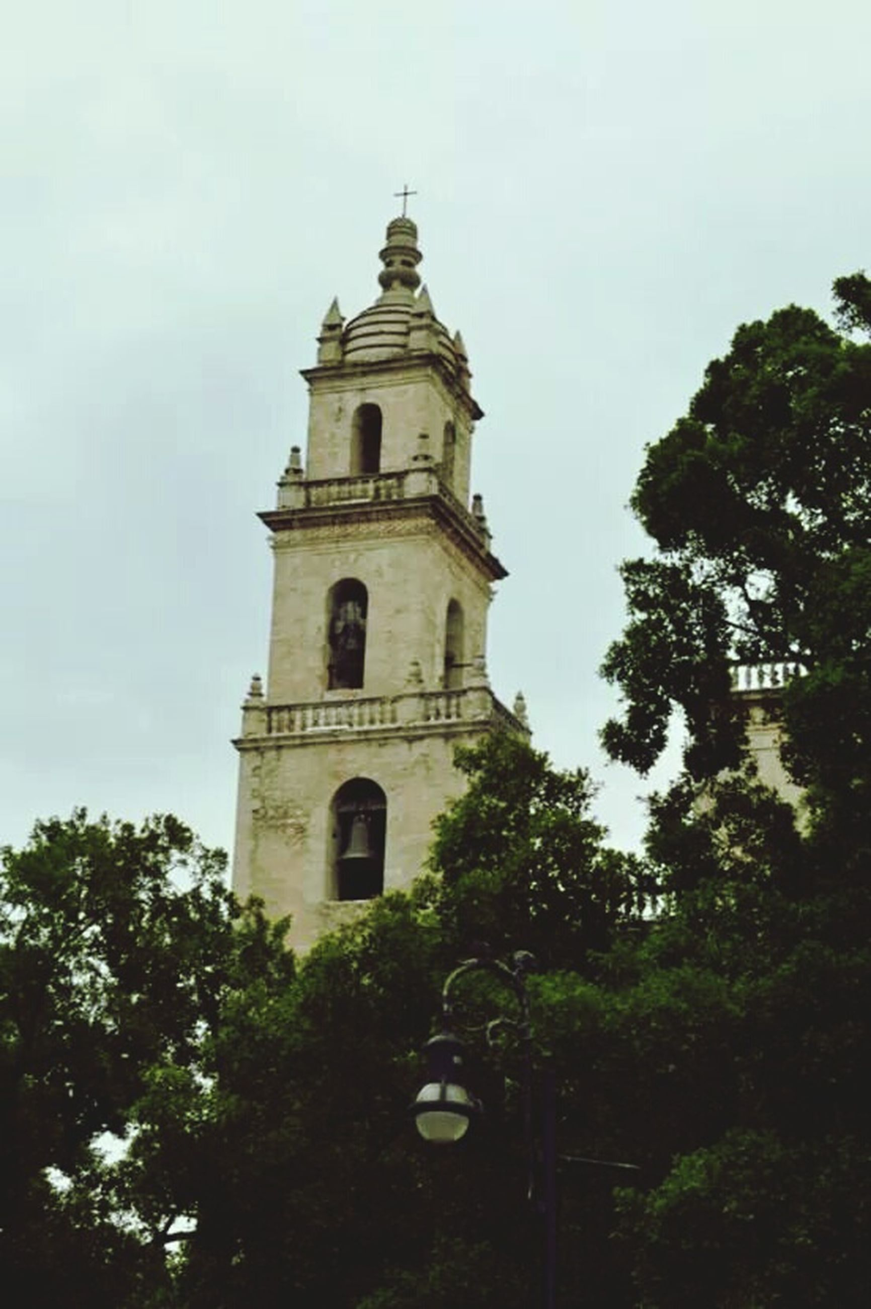 low angle view, architecture, tree, building exterior, built structure, sky, tower, clock tower, religion, history, tall - high, day, place of worship, outdoors, famous place, growth, no people, travel destinations, clear sky