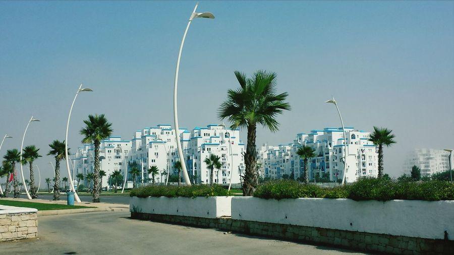 Martill Morocco