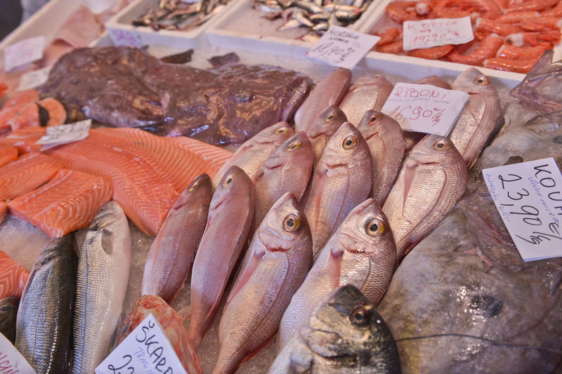 Close-up of seafood for sale