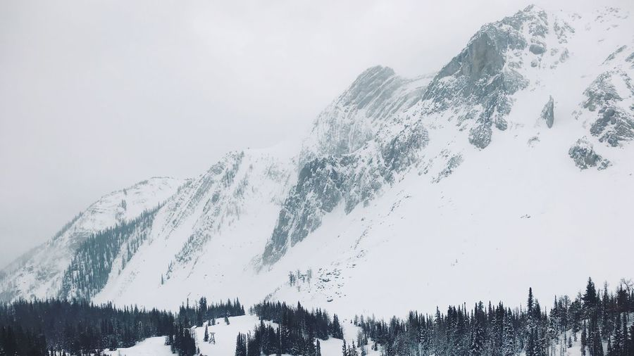 Panoramic View Of Trees And Snowcapped Mountains Against Sky